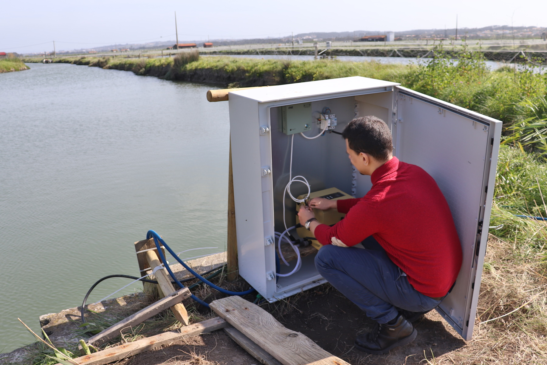 Water Quality Monitoring in an Aquaculture at Figueira da Foz