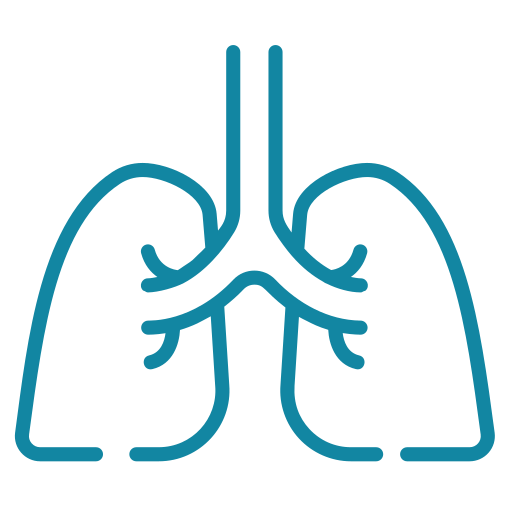 lung (1)